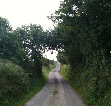 Country Road near Bantry, West Cork, Ireland